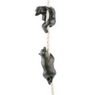 klimmende beren